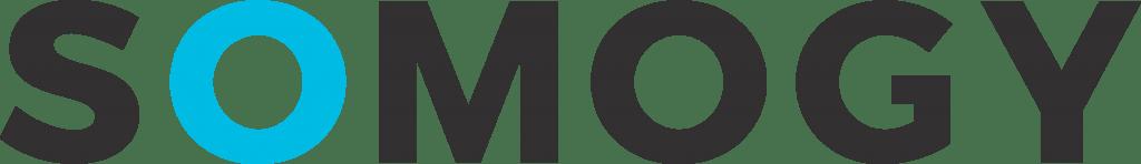 Somogy Consultancy IT logo